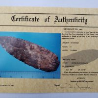 Fl. Stanfield Paleo w/COA! | Fossils & Artifacts for Sale | Paleo Enterprises | Fossils & Artifacts for Sale