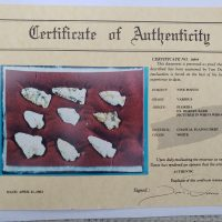 Group of 9 Florida points w/COA! | Fossils & Artifacts for Sale | Paleo Enterprises | Fossils & Artifacts for Sale