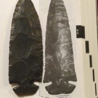 """6 """" Dove Tail Two COA 