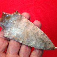 Buzzard Roost  Artifact | Fossils & Artifacts for Sale | Paleo Enterprises | Fossils & Artifacts for Sale