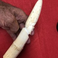 Vintage Carved Bone / Ivory Pair   Fossils & Artifacts for Sale   Paleo Enterprises   Fossils & Artifacts for Sale