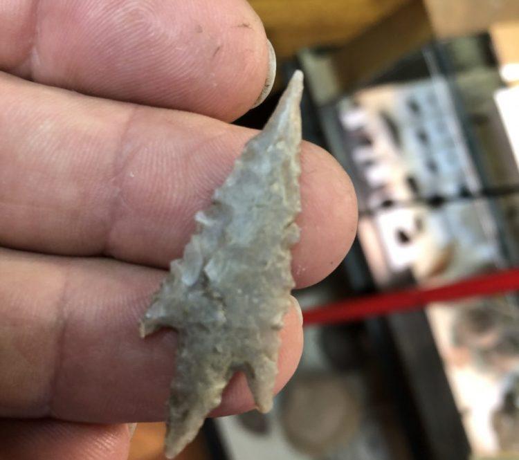 Texas Perdiz  Very Fine Arrowhead G-10 | Fossils & Artifacts for Sale | Paleo Enterprises | Fossils & Artifacts for Sale