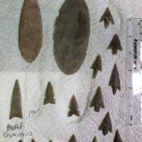 Harrell Texas Arrowhead Super Fine Detail | Fossils & Artifacts for Sale | Paleo Enterprises | Fossils & Artifacts for Sale