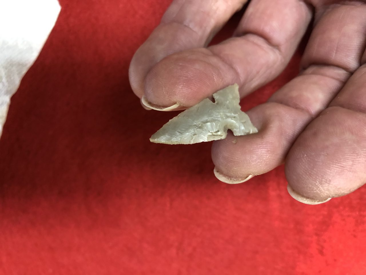 Harrell Arrowhead Texas - Fossils & Artifacts for Sale