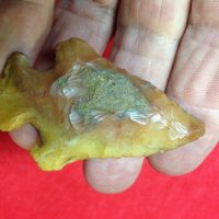 Clay (James Knight)   Fossils & Artifacts for Sale   Paleo Enterprises   Fossils & Artifacts for Sale