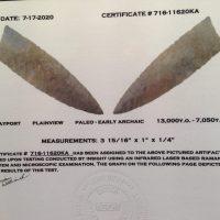 Plainview Arrowhead Artifact AKA: Coastview (Texas) | Fossils & Artifacts for Sale | Paleo Enterprises | Fossils & Artifacts for Sale