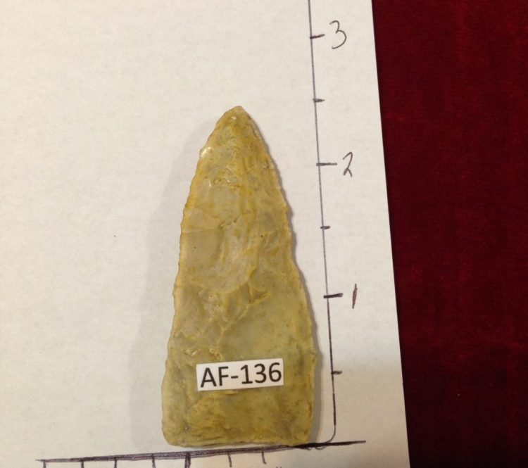 Safety Harbor Type Arrowhead / Artifact | Fossils & Artifacts for Sale | Paleo Enterprises | Fossils & Artifacts for Sale