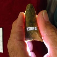 Suwannee Type Point | Fossils & Artifacts for Sale | Paleo Enterprises | Fossils & Artifacts for Sale