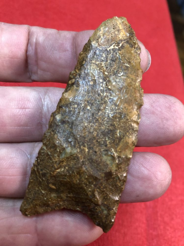 Suwannee Type lanceolate Artifact | Fossils & Artifacts for Sale | Paleo Enterprises | Fossils & Artifacts for Sale