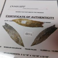 Wheeler Paleo Artifact COA | Fossils & Artifacts for Sale | Paleo Enterprises | Fossils & Artifacts for Sale