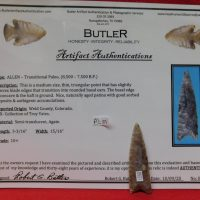 Allen Paleo Point Colorado | Fossils & Artifacts for Sale | Paleo Enterprises | Fossils & Artifacts for Sale
