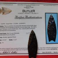Clovis Petrified Wood COA   Fossils & Artifacts for Sale   Paleo Enterprises   Fossils & Artifacts for Sale