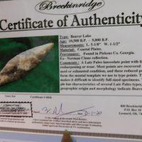 Beaver Lake Georgia COA | Fossils & Artifacts for Sale | Paleo Enterprises | Fossils & Artifacts for Sale