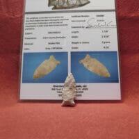 Greenbrier G-10 OCA Cert | Fossils & Artifacts for Sale | Paleo Enterprises | Fossils & Artifacts for Sale