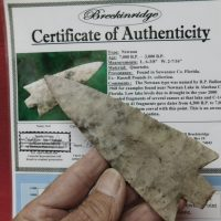 Giant Newnan 6 3/8 inches COA | Fossils & Artifacts for Sale | Paleo Enterprises | Fossils & Artifacts for Sale