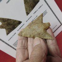 Hillsborough Super Fine G-10 | Fossils & Artifacts for Sale | Paleo Enterprises | Fossils & Artifacts for Sale