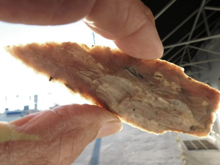 SCOTTSBLUFF Type 1 COA   Fossils & Artifacts for Sale   Paleo Enterprises   Fossils & Artifacts for Sale