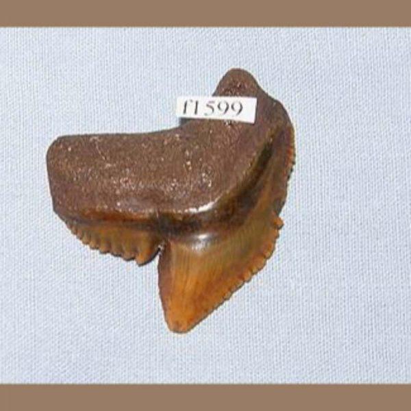 f1599a