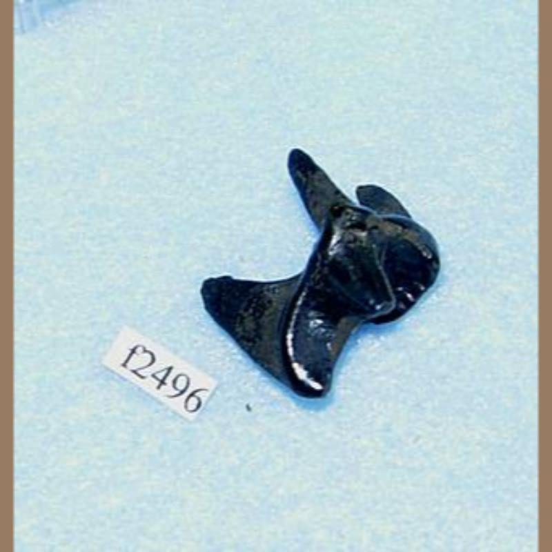 Otter Molar Fossil | Fossils & Artifacts for Sale | Paleo Enterprises | Fossils & Artifacts for Sale